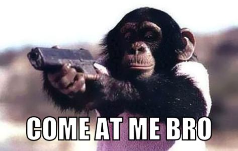 monkey-with-a-gun