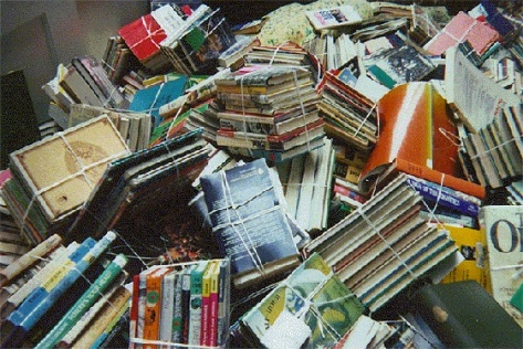 tendrnob24dumped-library-books