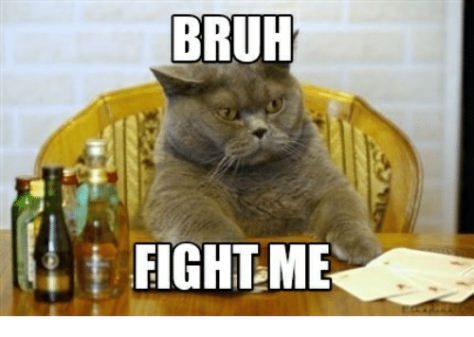bruh-fight-me-27954658