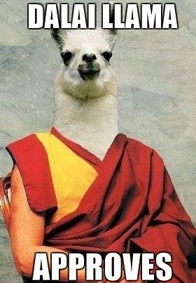 dalai-llama-memes