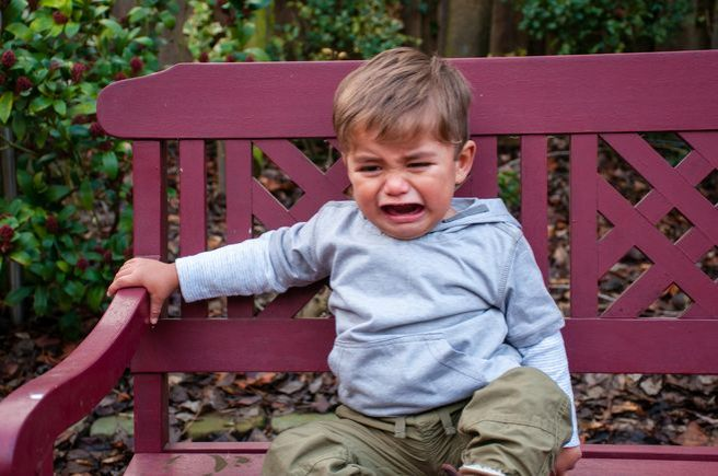 Crying Toddler on Bench